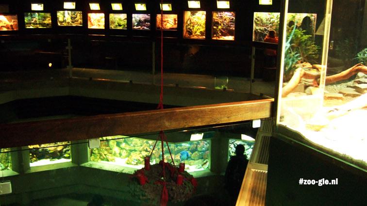 2007 De twee verdiepingen van het Aquarium