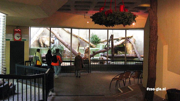 2007 Binnenverblijf Syberische beren: veelhoekige vlakken, eierdoosplafond en kerstkrans