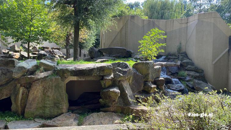 2020 Buitenverblijf Syrische beren onveranderd tov 2007