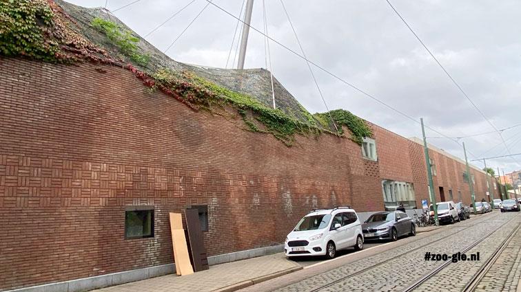 2021 Baksteenpatronen op de muur Ommeganckstraat achter de buffelsavanne