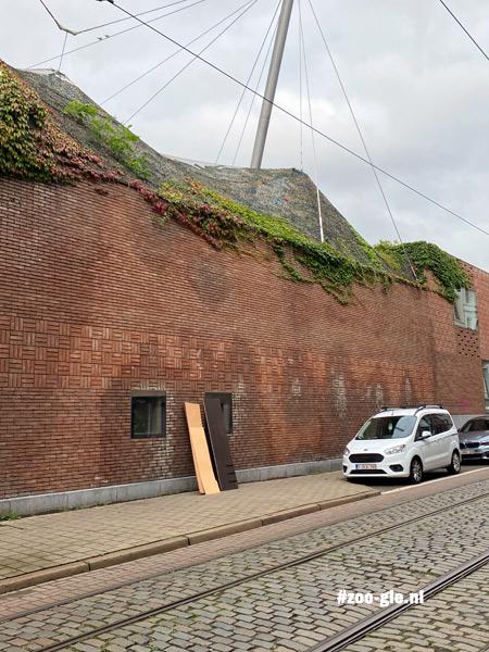 2021 De muur bij de vogel- en buffelsavanne met een favoriet van mij: het neushoorngebouw