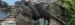 2021 Aquarium en reptielengebouw: tempel op rots