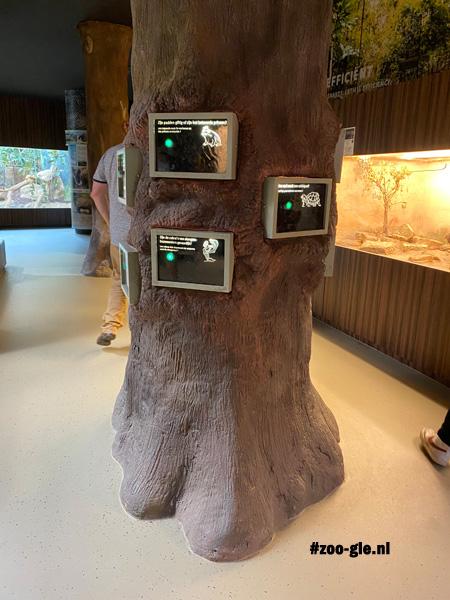 2021 En een boom is educatief aan het werk gezet