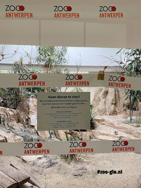 2021 Ah, het rondje zoo Antwerpen zit er alweer op